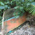 Foto de Turtle Bay Eco Resort