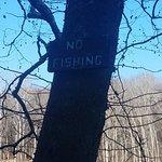Radnor Lake State Park Foto