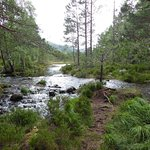Photo of Cairngorms National Park