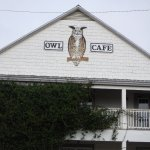 The Owl Cafe