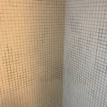 Mould on shower wall