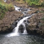 Maui Easy Riders照片