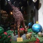 Foto The Harvest Patissier & Chocolatier