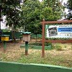 Photo of CIGS Zoo