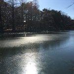 2018年正月。ボート池に氷が張っていた ボートは営業中でしたが、砕氷船のように氷を割りながら進んでいました 結構大変そう。