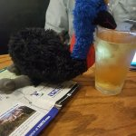 Cassie the Cassowary enjoyed a drink too