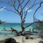 Photo of Kanumera Bay