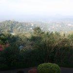 Photo of Amaya Hills