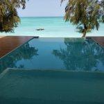 Presidential Private Pool