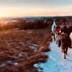 Family private tour in beautiful winter sun