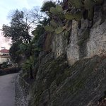 Tappeinerweg Foto