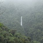 Photo of Tapanti National Park