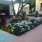 Flower plantation in the math campus