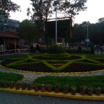 The view in the campus