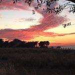 Bild från Apollo Beach