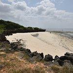 Photo of Watamu Beach