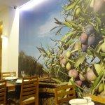 Bajo este olivar de aceitunas Picual cenabamos cada noche en El Andaluz de Juan Martinez.