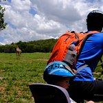Photo of Kololo Game Reserve
