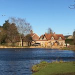 The duckpond at Great Massingham