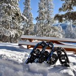 Photo de Storm Mountain Lodge & Cabins