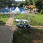 Buggies and Pool