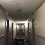 Hallway with leaking ceiling. Asbestos??