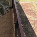 Balcony covered in cobwebs and bird poo - overlooking weeds