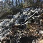 صورة فوتوغرافية لـ Vogel State Park