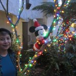 Santa Mickey decoration
