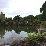 Photo of Kuirau Park