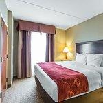 Foto de Comfort Suites Knoxville