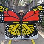 Lena, as a Monarch butterfly!