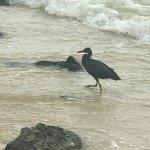 Photo de Tohko Beach Resort
