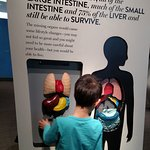 The Discovery - Terry Lee Wells Nevada Discovery Museum의 사진