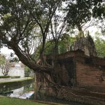 Foto de The Dhara Dhevi Chiang Mai