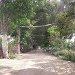 Vista del camino principal de la Hacienda