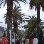 Christmas Riva Split