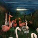 Fotografia lokality Zoo Kosice