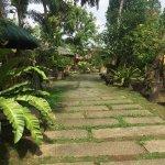 Foto de Hibiscus Garden Inn
