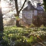 Beautiful Spring Flowers at Mount Juliet Estate