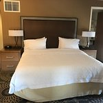 Foto de Hampton Inn & Suites Austin Downtown