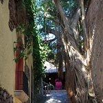 Photo of Hotel Posada del Hidalgo