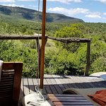 Private plunge pool overlooking the bush