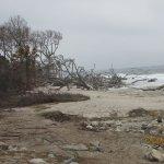 Driftwood Beach @ High Tide