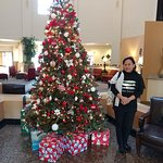 Lovely Christmas tree in the lobby