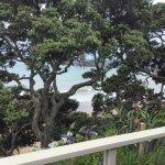 Φωτογραφία: Beach Lodge
