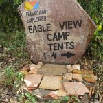 Eagle View, Mara Naboisho Photo