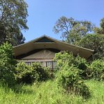Mara Engai Wilderness Lodge Photo