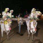 Photo de Vijayshree Resort & Heritage Village,Hampi