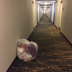 Smelly garbage left in hallway overnight. Occurred several times during the stay.